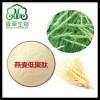 燕麦蛋白肽粉 燕麦若叶粉 苗汁粉 代餐粉 燕麦膳食纤维粉