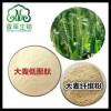 大麦若叶提取物 大麦青汁粉 大麦若叶青汁粉 水溶性麦苗粉 OEM代加工