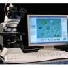 藻类智能鉴定计数仪