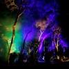 森林灯光秀设计森林灯光秀