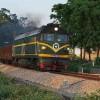 青岛到奇姆肯特Chimkent国际运输铁运