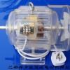 三相鼠笼式电动机模型