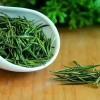 云雾茶-雨前特级绿茶-公司年会送茶叶做礼品-礼品茶批发-自有茶山-鸦鹊山茶叶