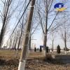 电杆爬梯电杆检修工具水泥电杆安全爬梯