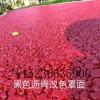 水性聚合物彩浆水性彩色聚合物薄层道路美化