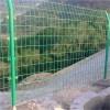 厂家供应圈地防护围网,双边丝护网,铁丝护栏网可定制