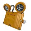 防爆LED消防通道安全出口应急照明灯
