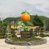 园林景观不是缺少美,而是缺少发现艺术玻璃钢橘子雕塑