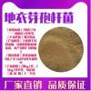 地衣芽孢杆菌生物肥料发酵菌剂动物饲料添加剂水产养殖用菌种