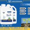 司普沃赫蔓海藻型生根剂